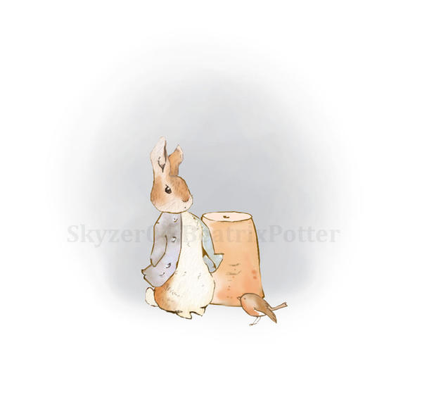 How To Draw Peter Rabbit page 2