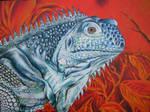 Iguana '09