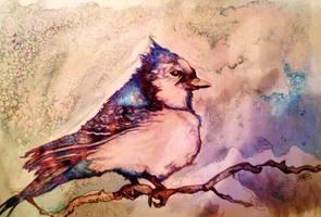 Blue Jay Way- Tessie Clune