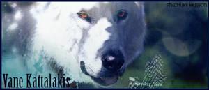 Vane The Wolf