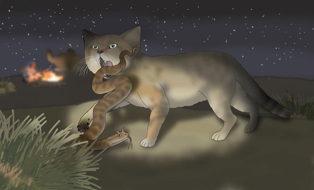 Desert Night Hunter