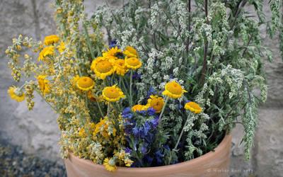 Summer Bouquet by BrokenShell121
