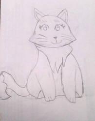 Cat Tutorial