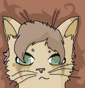 CatnipMew's Profile Picture