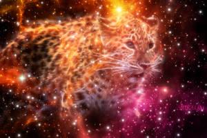 Jaguar space 090815