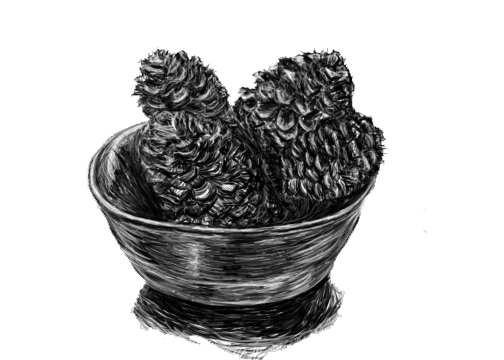 Gary loved scented pine cones by 6maryjane