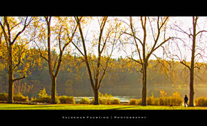 Fading Autumn by Val-Faustino