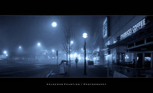 Stranger in the Mist by Val-Faustino