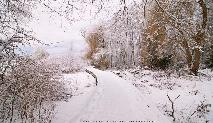 Endless Winter by Val-Faustino