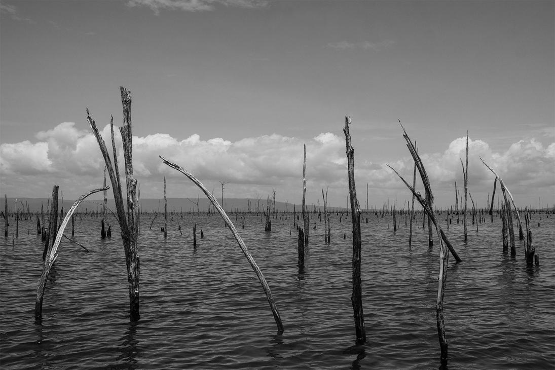 Brokopondo stuwmeer by SurinameBlogger