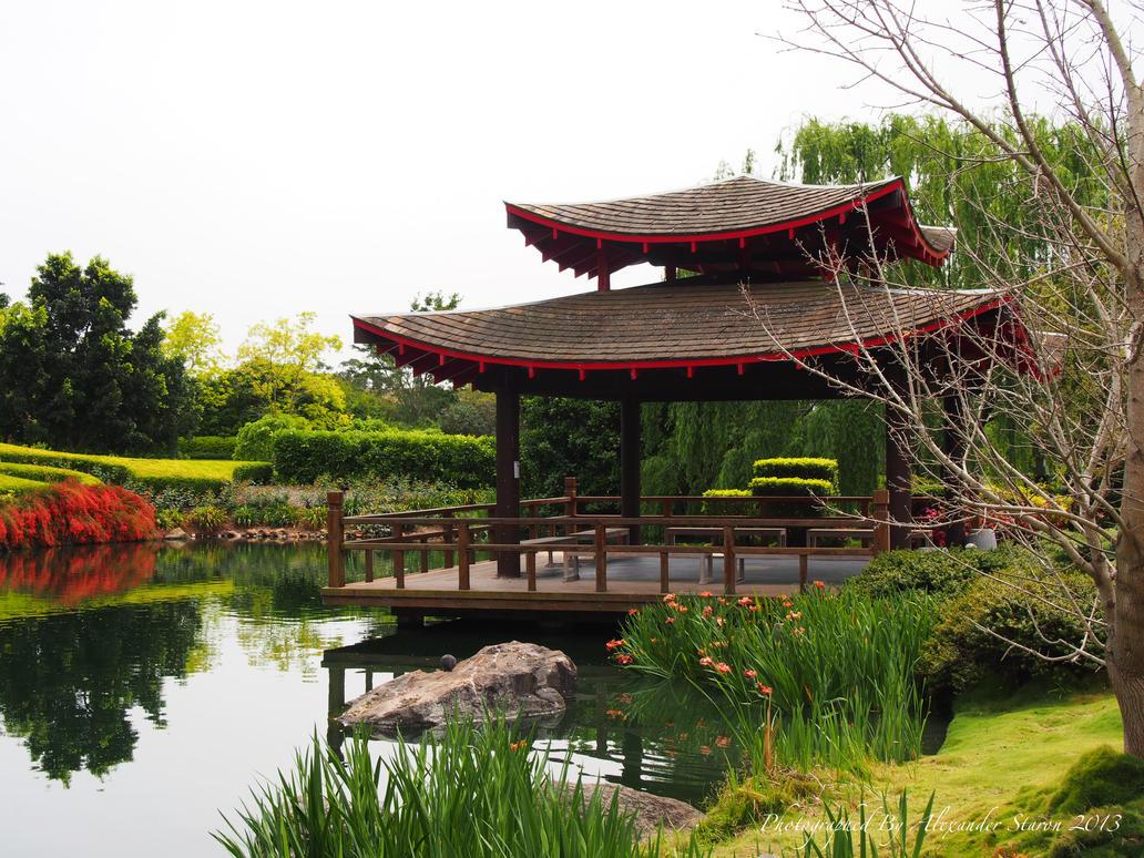 Superior Oriental Garden   Hunter Valley By Hoscba ...