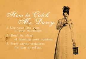 How To Catch Mr. Darcy by midenian-lostie