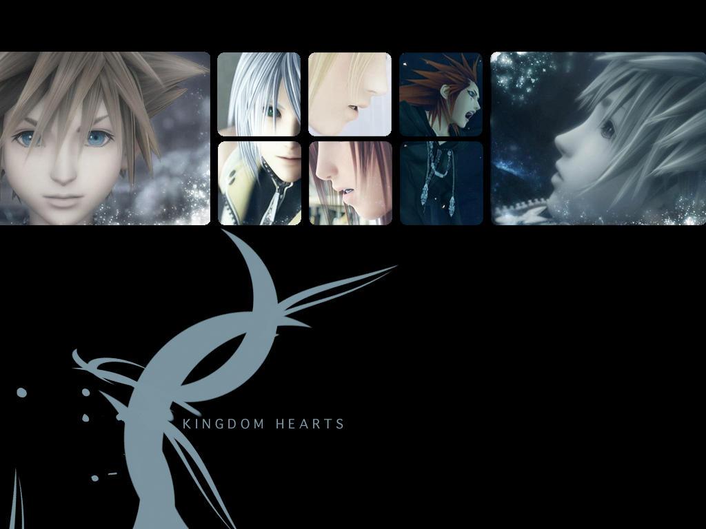 kingdom heart 2 fm: