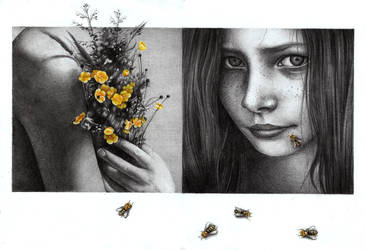 Secret Life of Bees by youngmoons