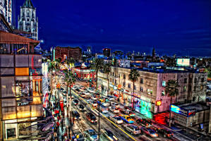 Hollywood Nights - 20835