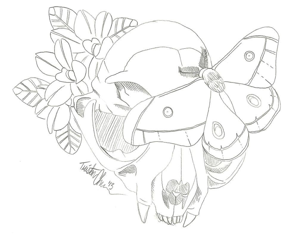 Tattoo Machine Line Drawing : Cat skull and moth tattoo by tree bag on deviantart