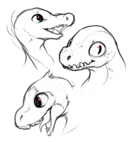 Raptors by Coriq