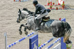Show Jumping Championship 2006
