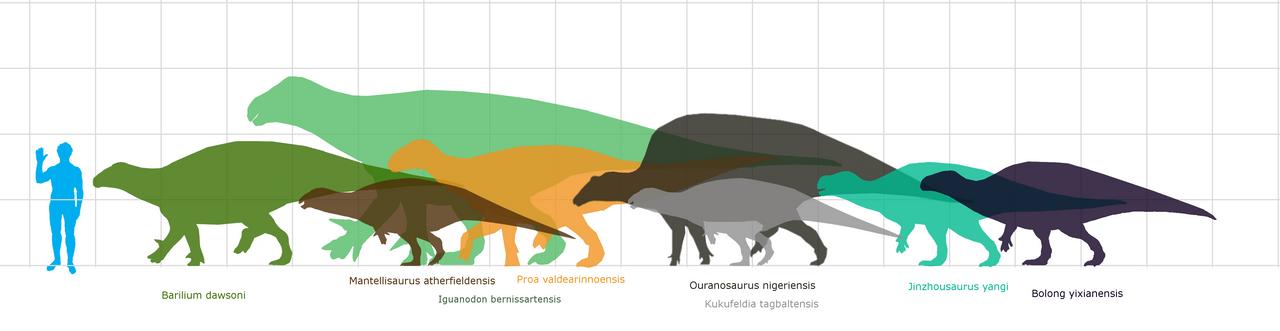Iguanodontidae by Veterufreak