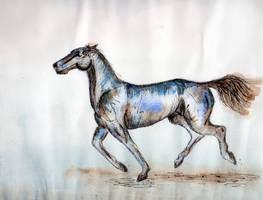 Inky Blue