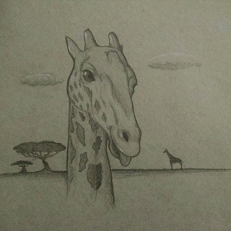 Giraffe by HsnGoneWild