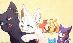 Nonai Cats