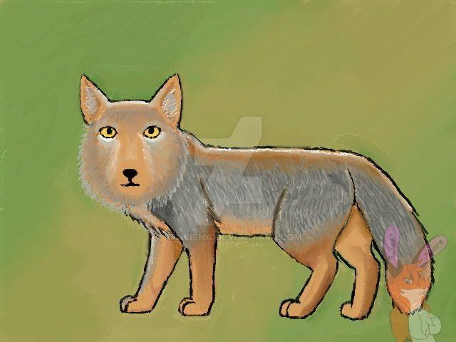 Tibetan Fox by Rakeisha