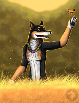 Tribute to Dogbomb