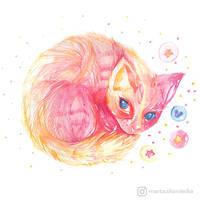A Kitten by mia-sko
