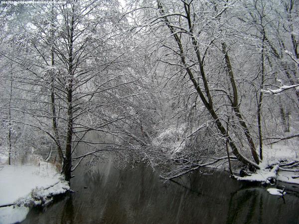 Snow : 04 by taeliac-stock