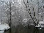 Snow : 04