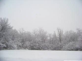 Snow : 05 by taeliac-stock