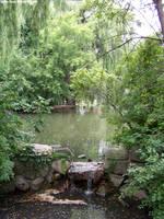 Pond : 01 by taeliac-stock