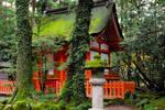 Shrines : Temple Building 01