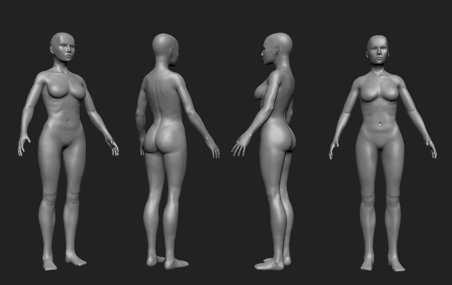Female anatomy study by awkner on DeviantArt