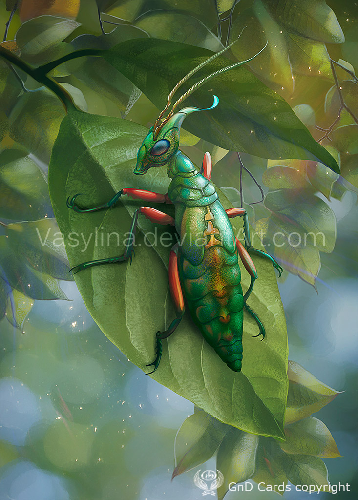 Insect- by Vasylina
