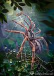 Tarantula by Vasylina