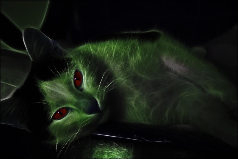 Yoda TeH Jedi - Fractal Cat by AylissoL