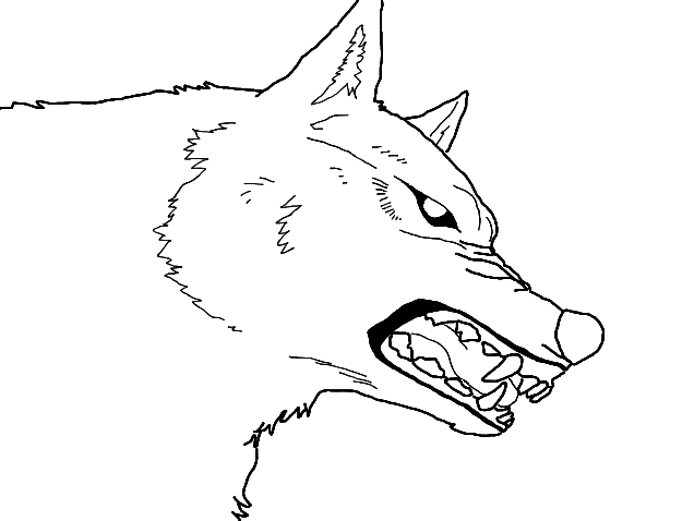 Wolf snarling side view drawing - photo#22