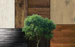 7 Wood  Textures
