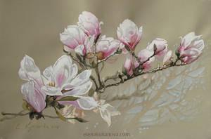 Magnolia-2 by EKukanova