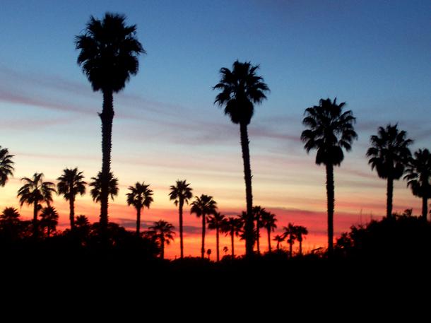 California Sunset by NAUX