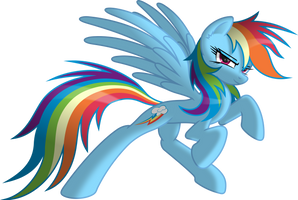 Rainbow Dash the Spirit of Loyalty
