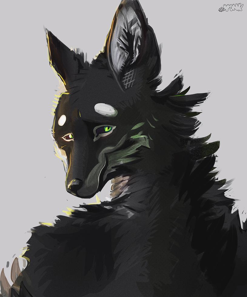 Shiko Portrait (commission) by justinohadi