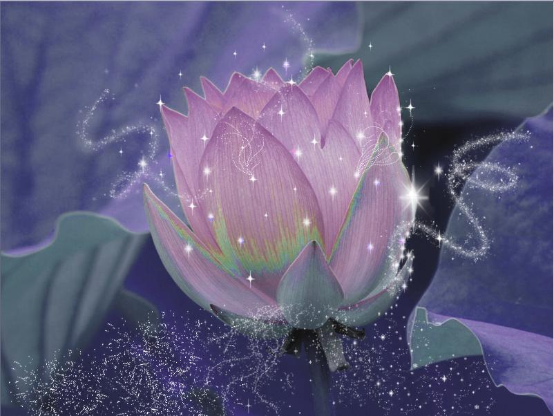 magical lotus flower by katitijani on DeviantArt