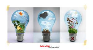 :: bulbs of life - series