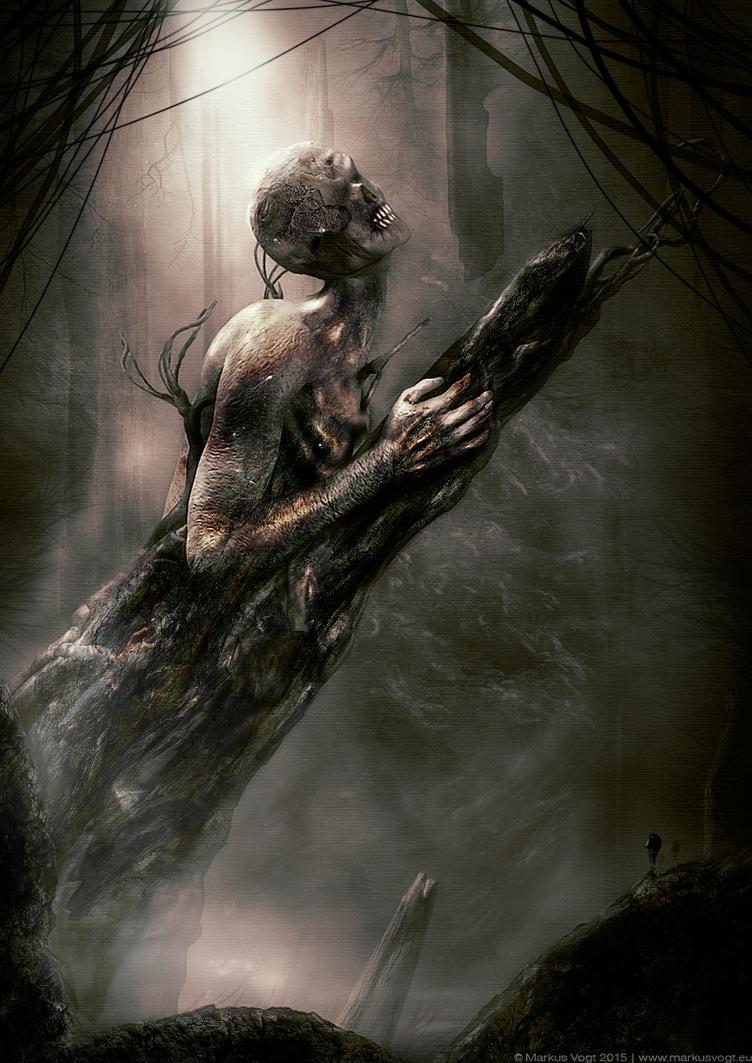 Forest Awaken by MarkusVogt