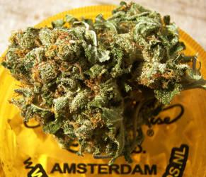 Taste of Amsterdam by johnny-PT