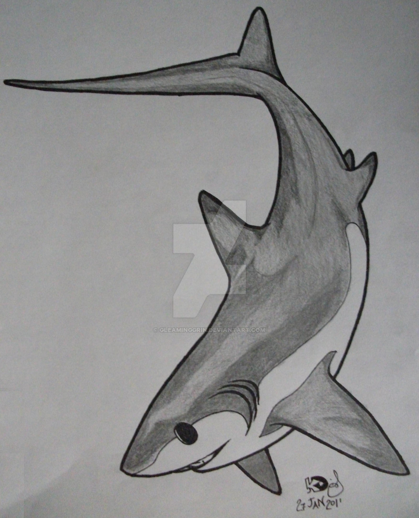 It's just a picture of Unusual Shark Tattoo Drawing