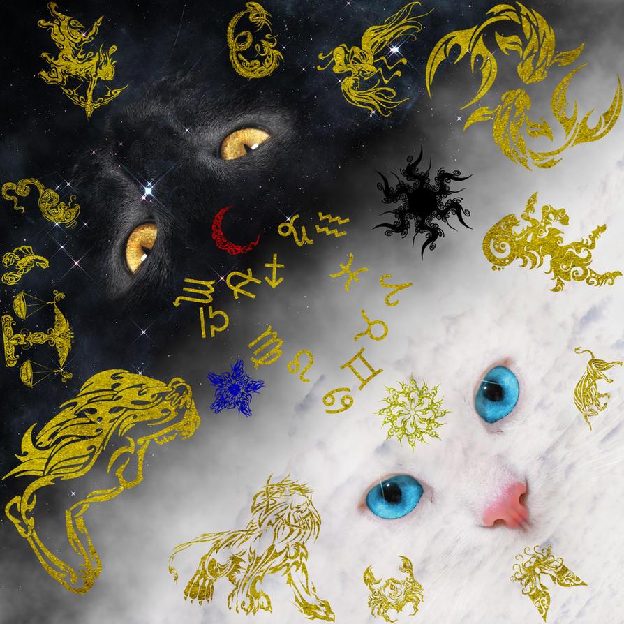 The Constellations of the Zodiac by darkblueking